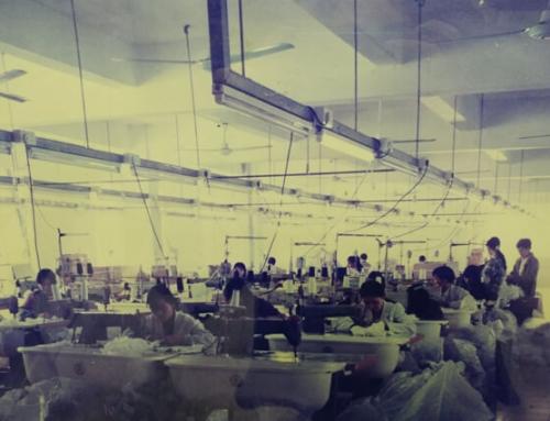 Arlisman Profile – Clothing Factory